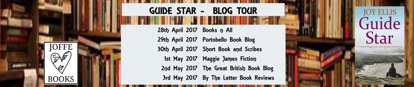 Guide Star blog tour banner (1)