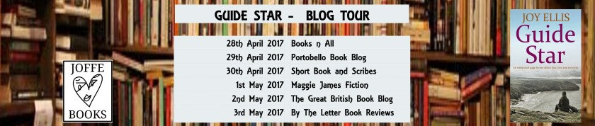Guide Star blog tour banner (1)