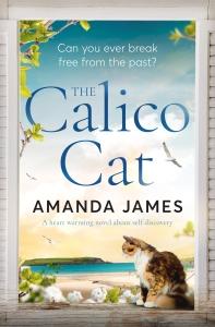 Amanda James - The Calito Cat_cover_high res