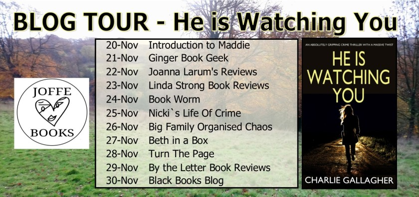 Blog Tour  Banner - He is watching you.jpg